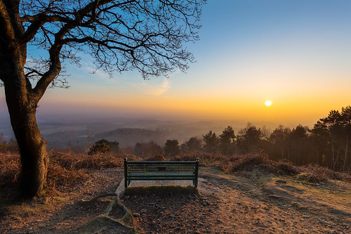 pitchhill sunset surrey surreyhills fog mist bench view tree hurtwood woodlands landscape countryside haze