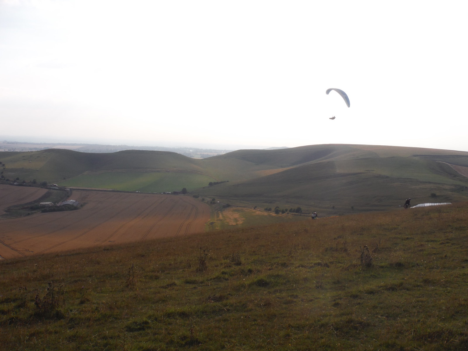 Glider above Milk Hill SWC Walk 127 Pewsey Circular