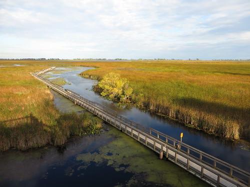 Marsh Boardwalk, Point Pelee National Park, Leamington, Ontario, Canada | by Ken Lund
