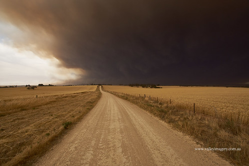grass south australia barossa pinery bushfire