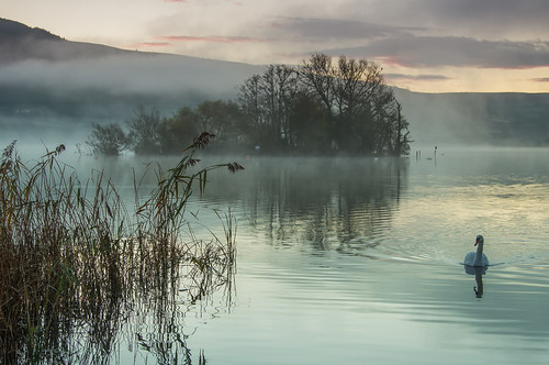 park morning mist mountain lake water grass wales sunrise canon reflections reeds eos early is swan hills national 7d ripples usm brecon beacons llangorse f4l ef24105mm