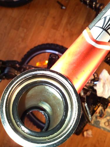 my custom 2010 trek 3900- Inside the headtube | by mtbboy1993