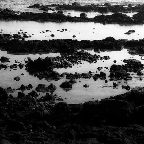 ocean winter light blackandwhite bw abstract reflection beach water monochrome square landscape hawaii lava blackwhite nikon rocks natural stones shoreline shore shallows d5000 noahbw