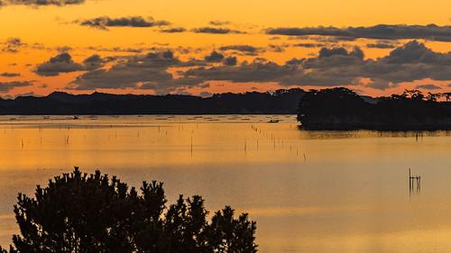 morning dawnsunrise matsushima winter seashore sea seascape miyagi orangecolor japan seaside 宮城郡 宮城県 日本 jp