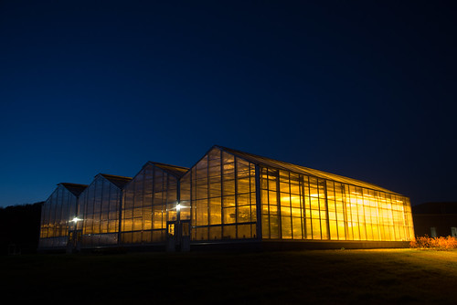 sunset greenhouses sunycobleskill
