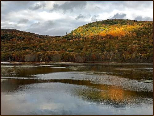 autumn mountain reflection gold golden pond october foliage lee octobermountain woodspond