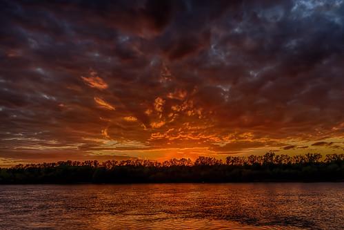 trees red silhouette reflections dark louisiana serene redriver shreveport bossiercity sonya7ii