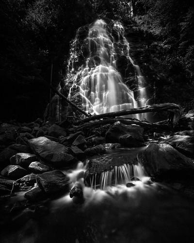 longexposure trees usa blur tree water rock forest river us waterfall nc rocks unitedstates unitedstatesofamerica northcarolina places hike nationalforest outerbanks blueridgemountains obx locations burnsville pisgahnationalforest crabtreefalls yanceycounty