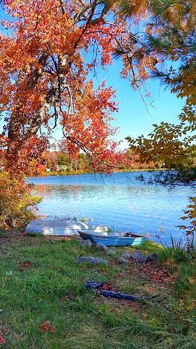 autumn trees lake fall nature water colors leaves landscape boats colorful seasonal fallfoliage