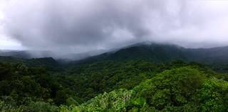 El Yunque Rain Forest | by nathanmac87