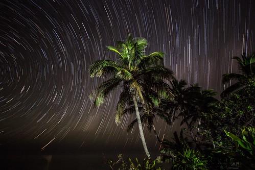 sea sky beach night strand canon palms stars landscape eos james islands long exposure view pacific nacht coconut south cook spuren trails himmel aussicht landschaft palme kokosnuss southsea startrails sterne langzeitbelichtung palmen inseln südsee 600d nightoneart