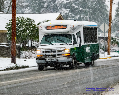 Skagit Transit Route 717 in the Snow