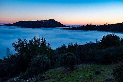 auberry california unitedstates us sierranevada pineridge mountains sunset fog