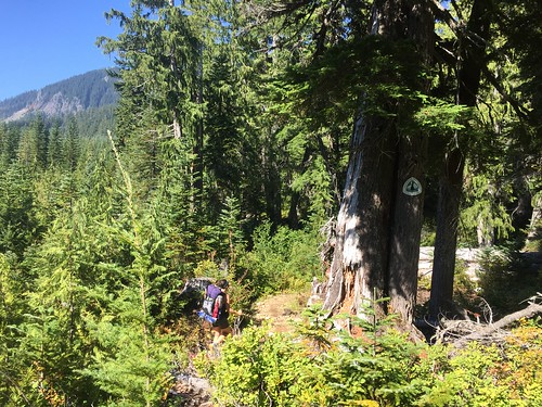 PCT: Day 157