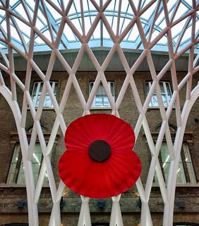 Kings Cross Station Poppy | by Hexagoneye Photography