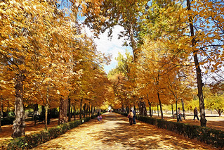 Aranjuez en noviembre | by M. Martin Vicente