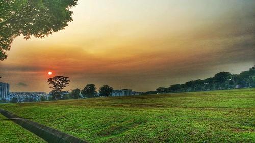 nature sunrise photography woodlands hdr morningrun 咸蛋黄 samsungnote3