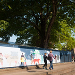 Book Festival gates | Even the gates around the Book Festival are looking lovely this year © Alan McCredie