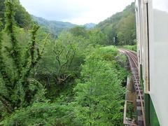 末沢川の渓谷を縫うように無人地帯を走る六十里越の旅