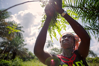 Guinea - Rural Women's Cooperative Generates Income and Improves Community Life | by UN Women Gallery