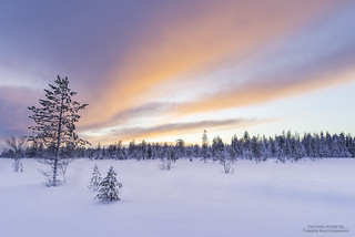 Lapland 2017 | by Tiger_67