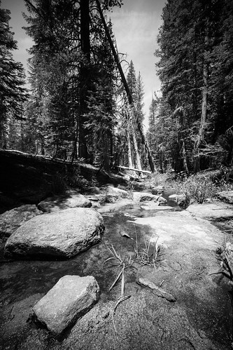 "Image titled ""Walking to Taft Point, Yosemite."""