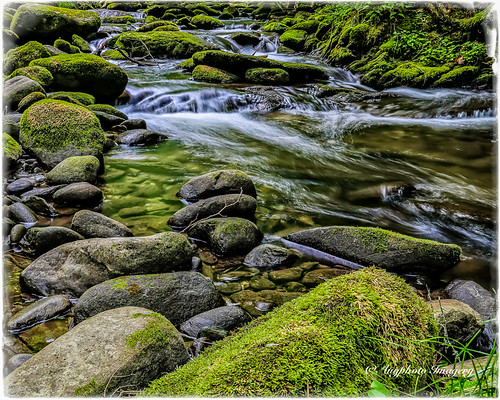 nature water river flow outdoors rocks unitedstates tennessee scenic townsend augphotoimagery