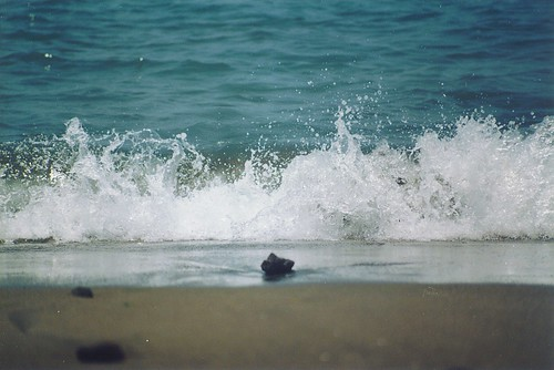 Beside the seaside - Well, I would like to be beside the sea