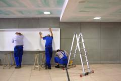 three shy painters