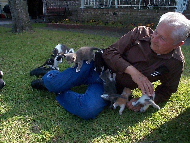 My Grandpa and his herd of kittens.