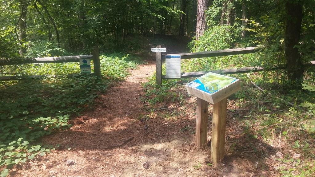 Kitty Hawk Woods Reserve