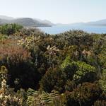 Di, 03.11.15 - 11:05 - Parque Nacional Chiloe
