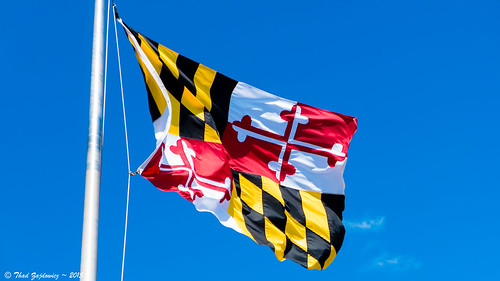 Maryland State Flag | by Thad Zajdowicz