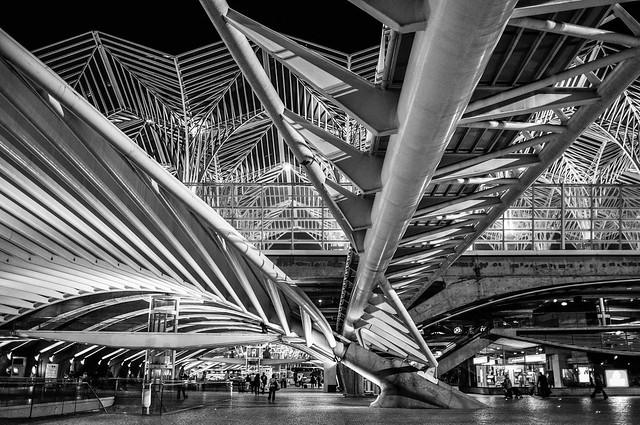 Lisbon's steel forest