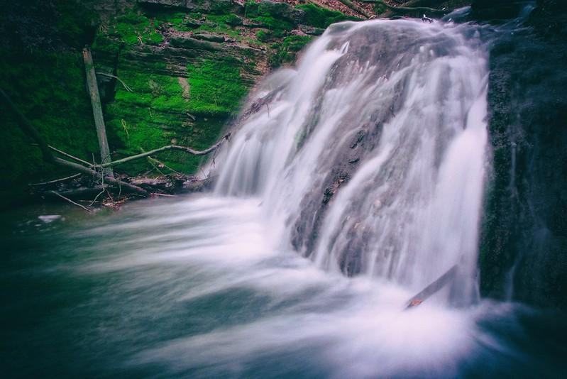 Wild Stream