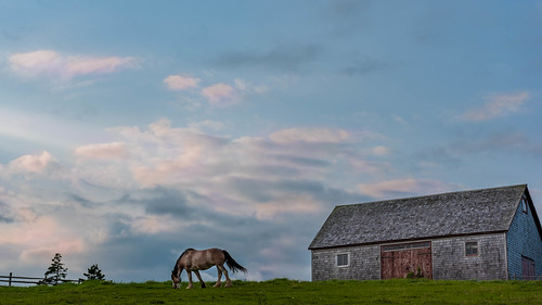 capebreton highlandvillagemuseum brasdorlakestrail novascotia horse sunset barn