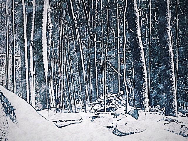 Snowy window view
