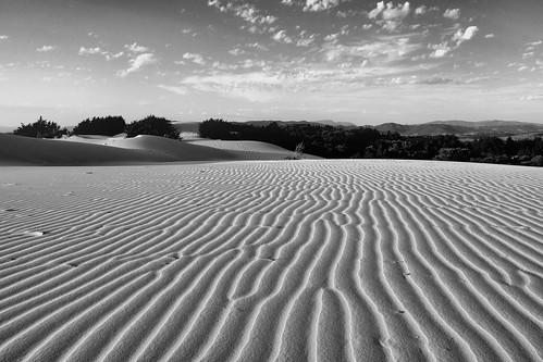 Dune di sabbia disegnate dal vento caldo del sud della sar for Effetto vento di sabbia