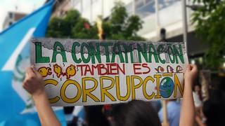 La corrupción y la ecología