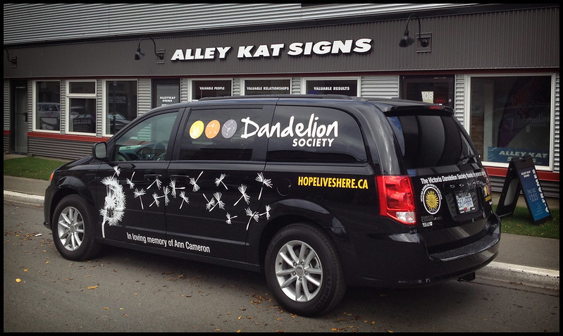 DANDELION1 vehicle graphics