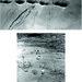 Efecte cutremur 1940 in diferite localitati