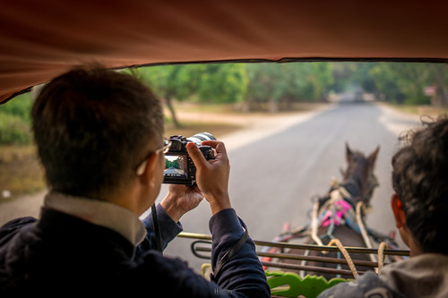 Horse Cart   by tehhanlin