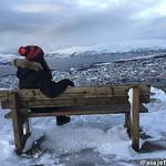 Viajefilos en Tromso, Monte Floya 004