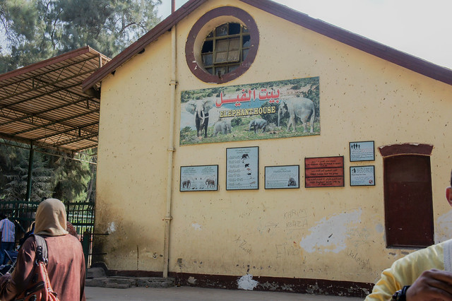 The elephant house in Egypt's Giza Zoo