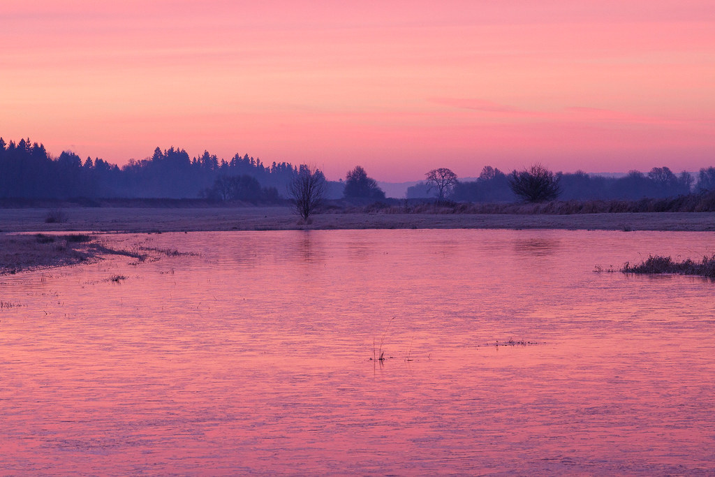Pink skies at sunrise reflect off a frozen Horse Lake at Ridgefield National Wildlife Refuge in Ridgefield, Washington on January 2, 2011. Original: _MG_2313.cr2