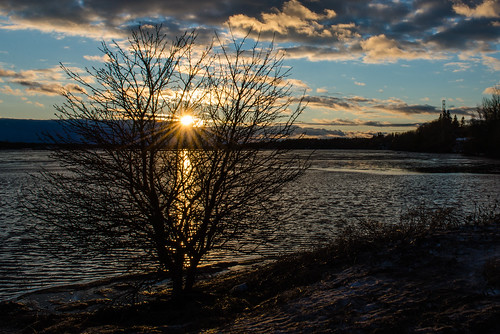 canada light shawnharquail sunset travel blue shawnharquailcom tree water newbrunswick