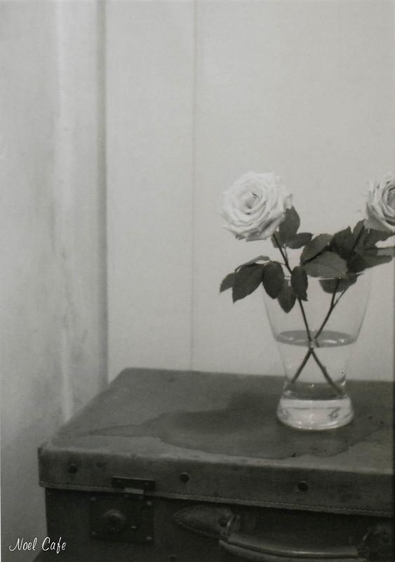 Monochrome Rose by Noël Café