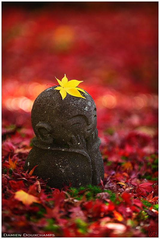 The return of the little Jizo (Enko-ji temple 圓光寺, Kyoto)
