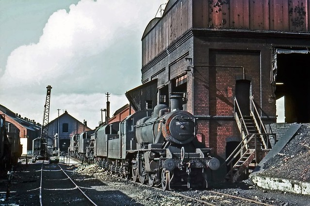 46428, Oxley Shed, March 1967