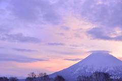 Purple Sunrise by Noël Café